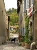 frankreich-lagrasse-hund