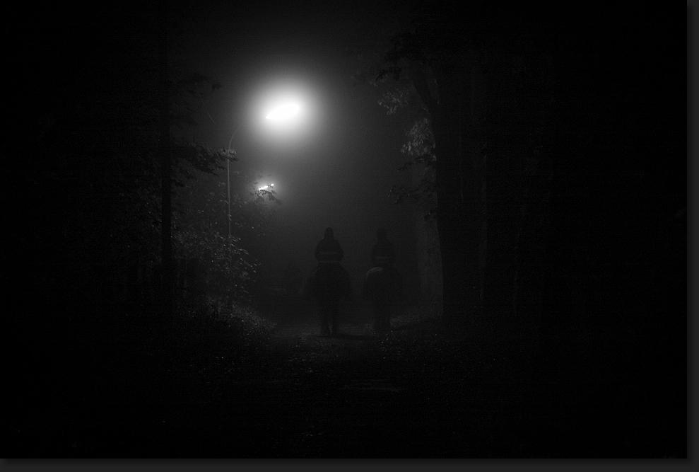 Hamburg Foto 2 - Nebelstimmungen