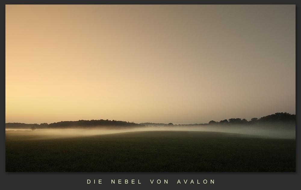 nebel von avalon1